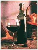 vino ristoranti bologna trattorie bologna